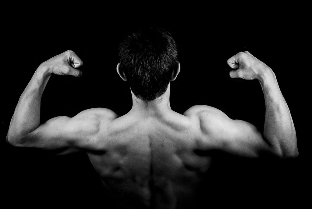 Build Muscles To Your Shoulder With These 4 Exercises Gymdragon
